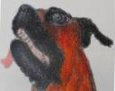 Antonio Pepe sells paintings online