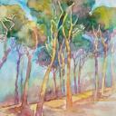 Karaart vende quadri online