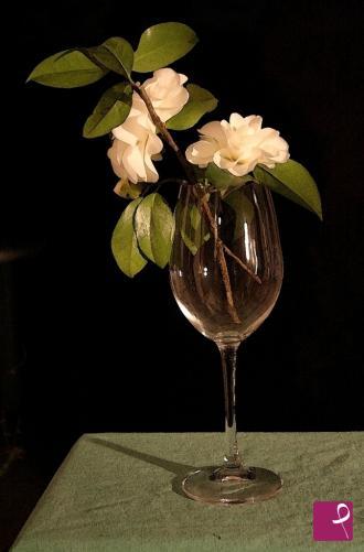 Vendita quadro drappeggio bianco su tavolo con angurie for Camelie bianche