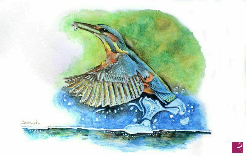 Vendita quadro martin pescatore chiara giovanelli for Carpe koi vendita online