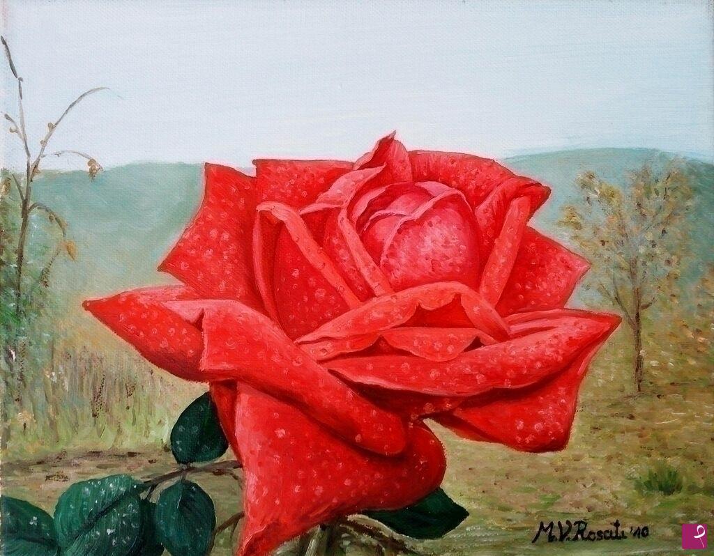 Vendita quadro rosa rossa in giardino maria vittoria rosati
